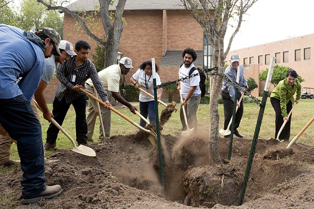 Students at UTRGV planted a tree on Thursday, Oct. 22, 2015, at the Chapel Lawn on the Edinburg Campus.