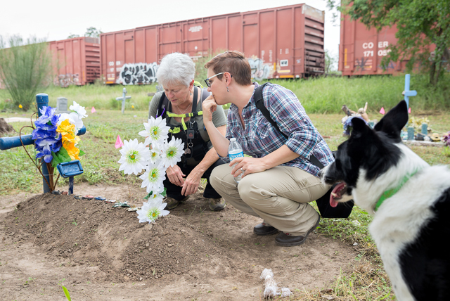 Dr. Sarah Rowe (at right), UTRGV assistant professor of sociology and anthropology, is seen here working with Lynne Engelbert (at left), a K9 search specialist from California with the Institute for Canine Forensics, and Piper, one of two search dogs, to help detect human remains at the Hidalgo County Pauper Cemetery. The cemetery closed in the early 1990s, leaving many graves unmarked and decades of records, including the names and locations of the deceased, lost or abandoned. Rowe is working with Hidalgo County to help recuperate that information, and the K-9 search dogs alone have been successful in finding at least 20 previously unidentified graves. The project is part of a service learning class in which some of Rowe's students work to identify burial sites. (UTRGV Photo by Paul Chouy)