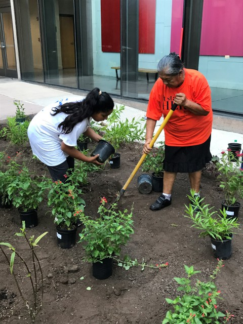 Members of Unidos Por RGV helped to create a community butterfly garden in the atrium in the College of Education and P-16 Integration (CEP) atrium on the Edinburg Campus. (Courtesy Photo)