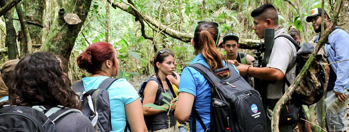 Costa Rica study abroad writing class immerses students in nature