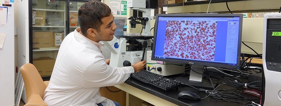 Roman Sanchez Martinez, a UTRGV biomedical sciences student conducting diabetes-related research on the effectiveness of melatonin as a potential contribution to diabetes treatment.