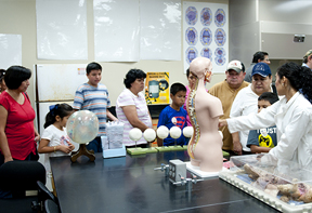 RGV families got to use lab equipment and learn about human anatomy in exhibits at the UTRGV science building, during HESTEC Community Day on Saturday, Oct. 10, 2015. (UTRGV Photo by Josué Esparza)